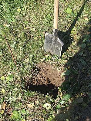 Удаление дерна и корней